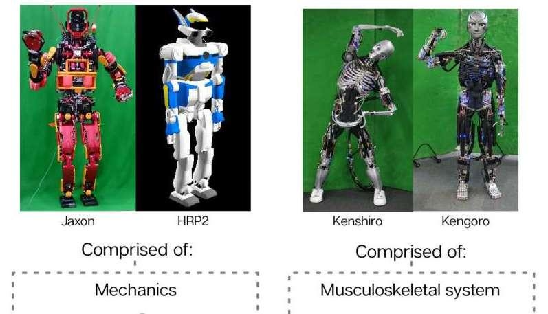 Роботы Kenshiro и Kengoro