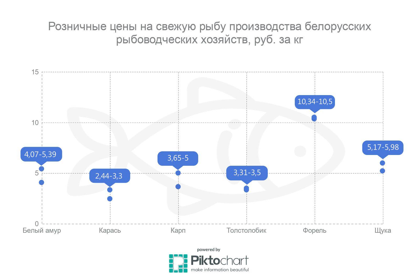 Розничные цены на свежую рыбу производства белорусских рыбоводческих хозяйств
