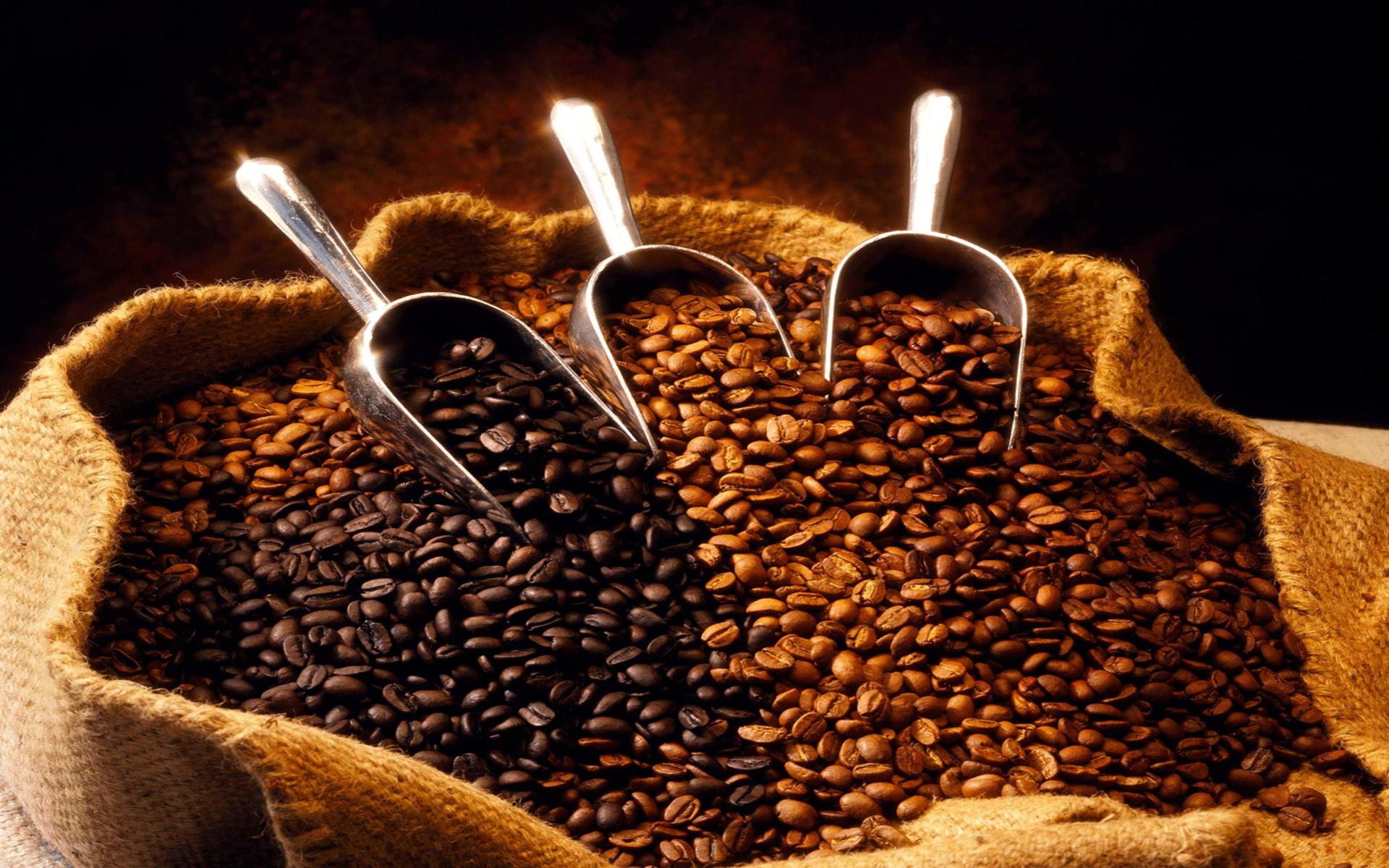 Производство кофе в мире сократится, но цены не вырастут.